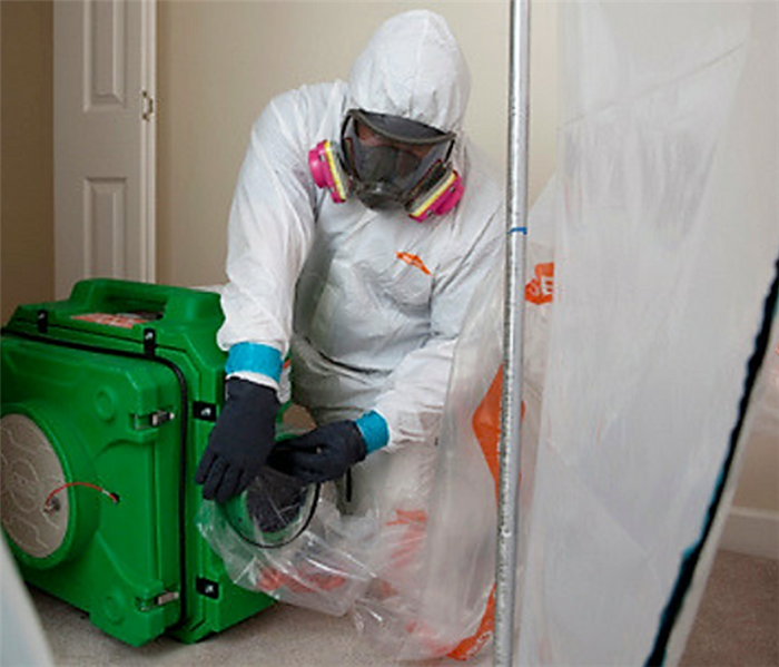 Mold Remediation Don't Spread Mold:  What to Do Instead