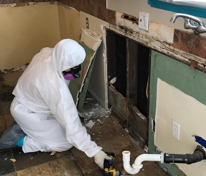 Mold Remediation Brake the Mold! SERVPRO Anaheim Hills:  Experts in Mold Remediation.