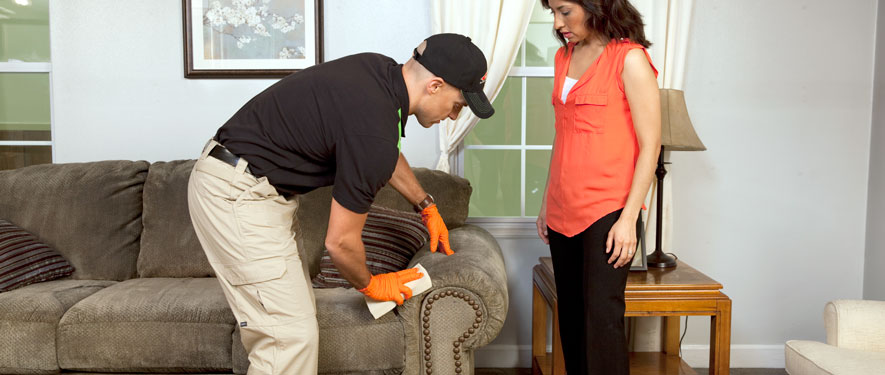Anaheim, CA carpet upholstery cleaning